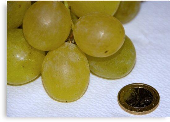 Monster Moscato grapes, Bolzano/Bozen, Italy by L Lee McIntyre