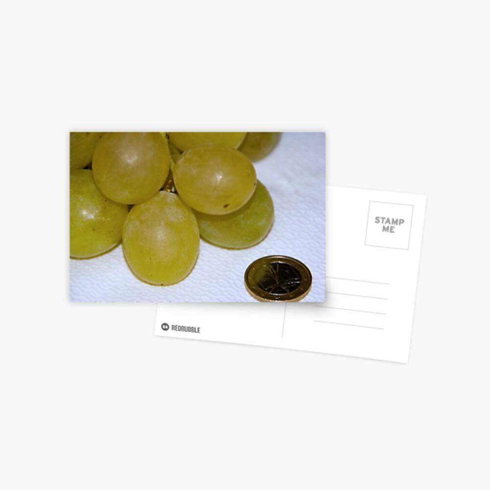 Monster Moscato grapes, Bolzano/Bozen, Italy Postcard