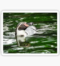 Penguin in emerald water Sticker