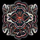 Cecropia Moth Mandala - Asymmetrical by jenithea