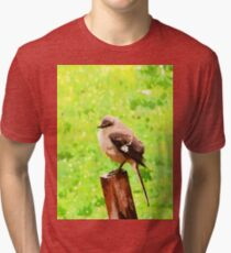 The Bird Painting  Tri-blend T-Shirt