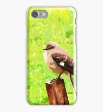 The Bird Painting  iPhone Case/Skin