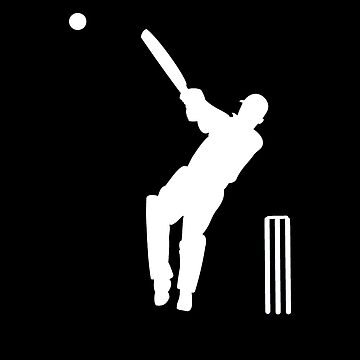 Cricket Fever! by mysports