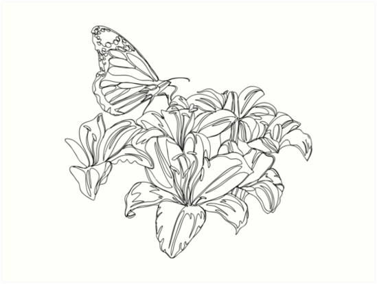 Continuous Line Drawing Flowers : Quot butterflies and flowers continuous line drawing art
