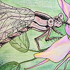 Brown dragonfly on columbine series #7 by dianalynn