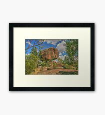 Cranky Rock sedated Framed Print