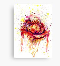 Colorful Cabbage Watercolor 2 Canvas Print