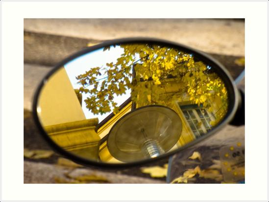 Peeking through the leaves, Bolzano/Bozen, Italy by L Lee McIntyre