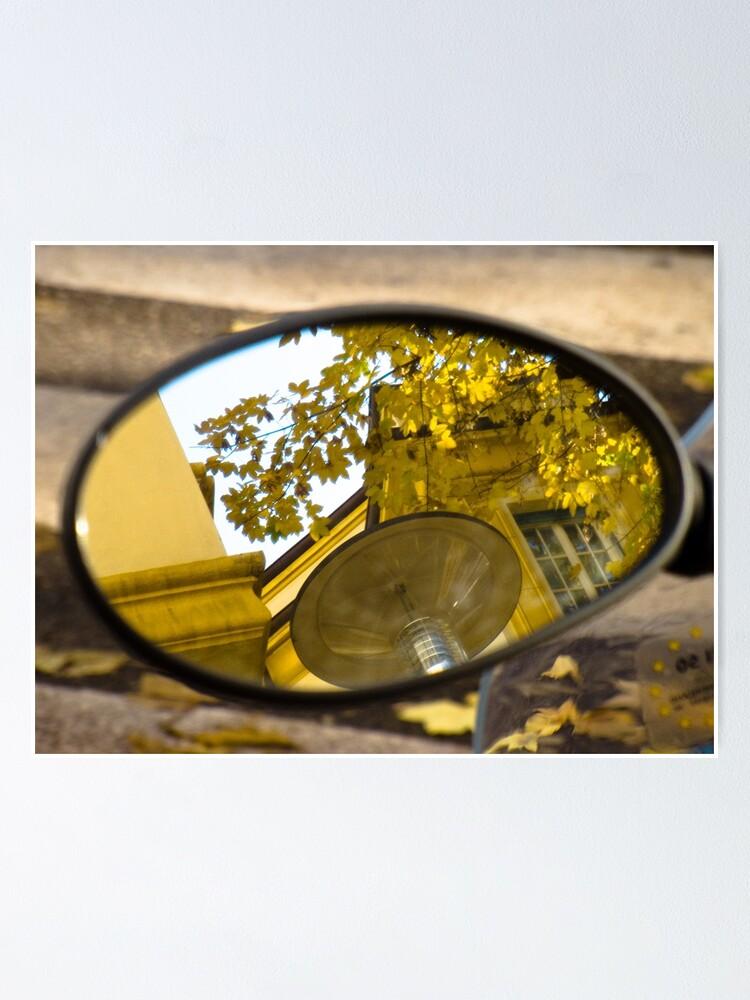 Alternate view of Peeking through the leaves, Bolzano/Bozen, Italy Poster