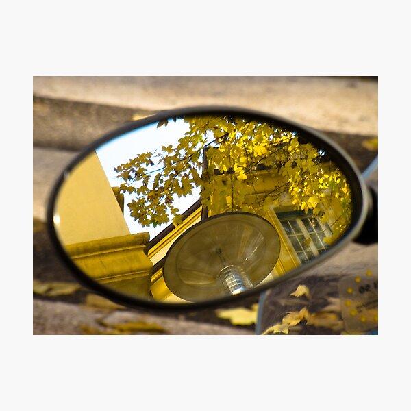 Peeking through the leaves, Bolzano/Bozen, Italy Photographic Print