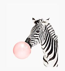 Zebra print, Bubble gum, Nursery art, Zebra wall art, Animal, Kids room, Modern art, Wall decor Photographic Print