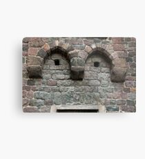 Friendly Face, Bolzano/Bozen, Italy Metal Print