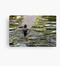 Meandering through the ripples, Bolzano/Bozen, Italy Canvas Print