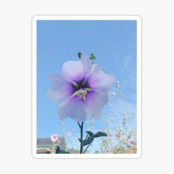 Cottage Garden Flower - Ten Sticker