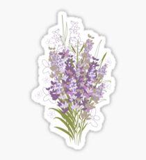 Lavender flowers Sticker