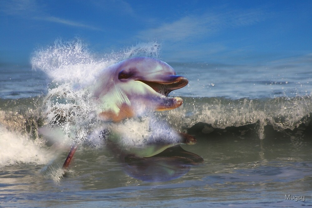SURFIN' by Mugsy