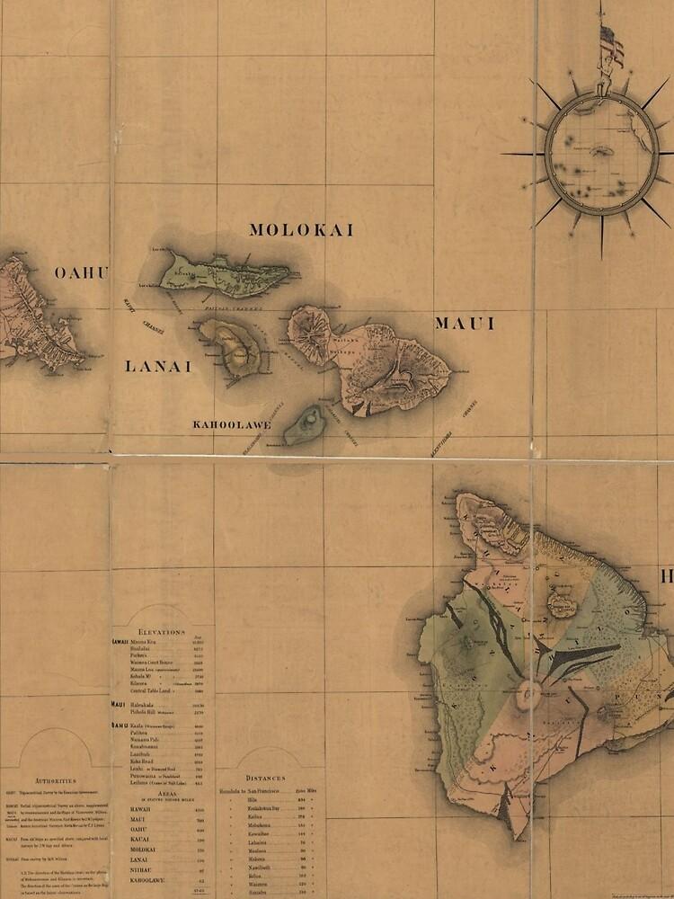 Vintage Map of Hawaii (1876) by BravuraMedia