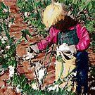Cottonpickin' Kid by Seth  Weaver