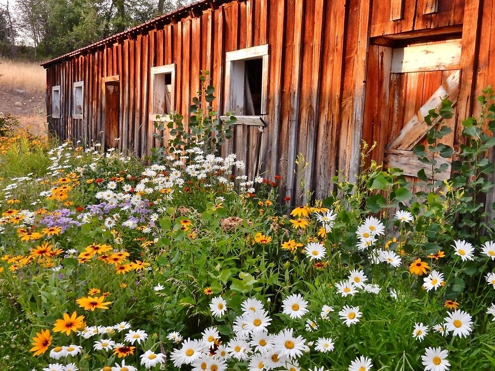 Grandma's Barn in the Summer by Randy Richards