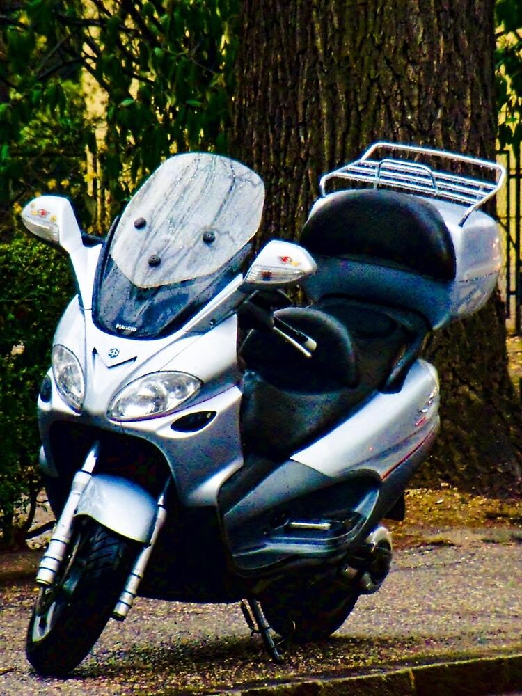 Face on a Moped, Bolzano/Bozen, Italy by leemcintyre