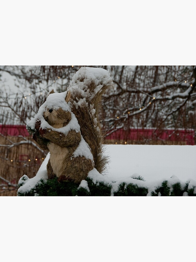 Snow covered animal figure, Christmas Market, Bolzano/Bozen, Italy by leemcintyre