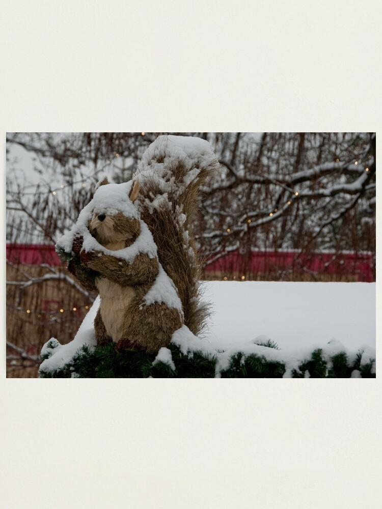 Alternate view of Snow covered animal figure, Christmas Market, Bolzano/Bozen, Italy Photographic Print