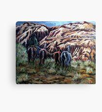 Going Home Through The Canyon Canvas Print