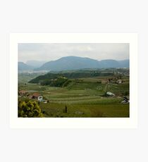 Valley with vineyards and apple orchards near Bolzano/Bozen, Italy Art Print
