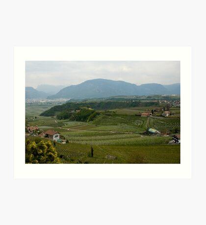 Valley with vineyards and apple orchards near Bolzano/Bozen, Italy Art Print