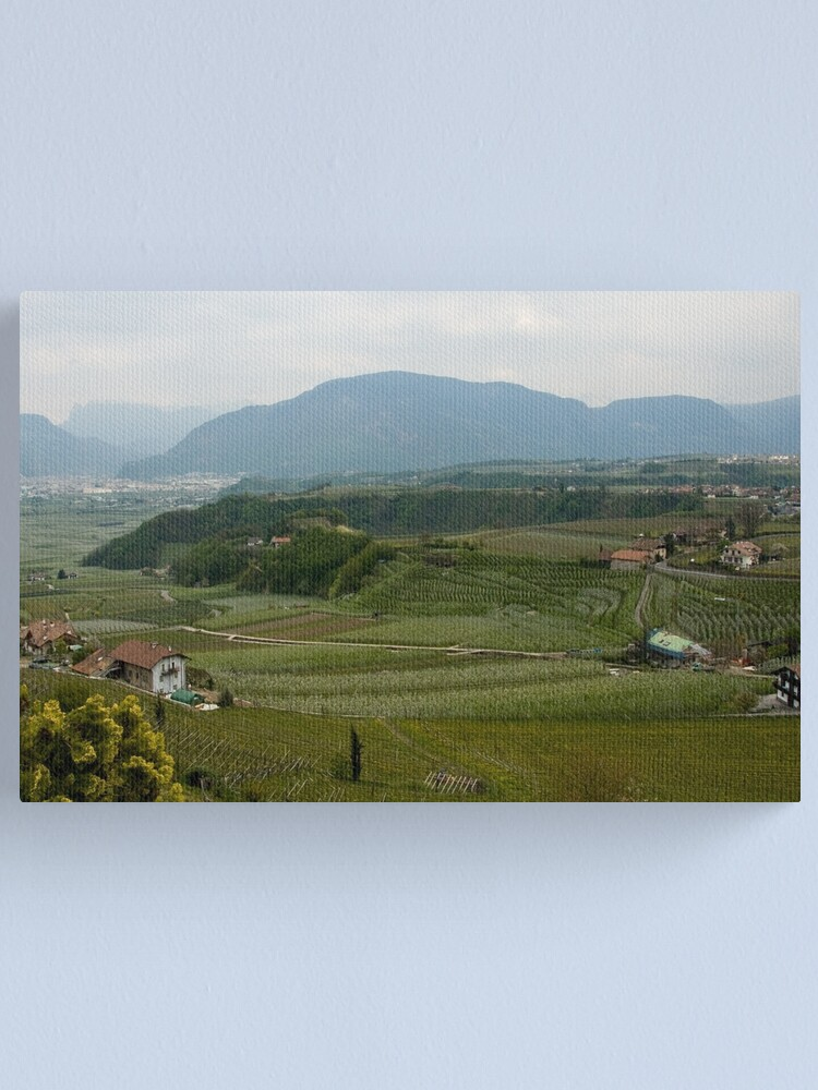 Alternate view of Valley with vineyards and apple orchards near Bolzano/Bozen, Italy Canvas Print