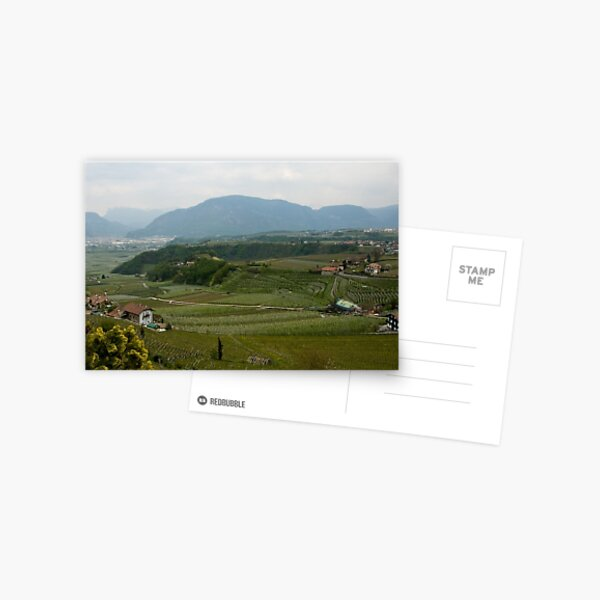 Valley with vineyards and apple orchards near Bolzano/Bozen, Italy Postcard