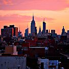 nyc sunrise  by ShellyKay
