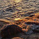 splashing on the rocks by Cheryl Dunning