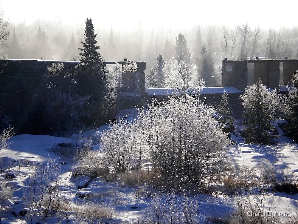 foggy pinawa by Cheryl Dunning