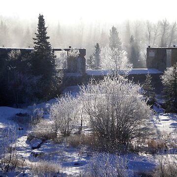 foggy pinawa by mistressotdark