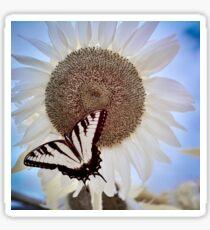 Butterfly Posing Sticker