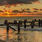 Old Jetty by Werner Padarin
