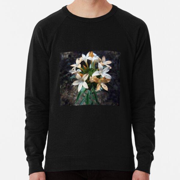Grand Collomia Lightweight Sweatshirt