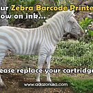 Zebra Barcode Printer by Thermal Transfer Labels