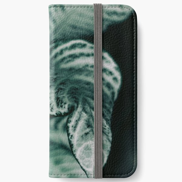 Different iPhone Wallet