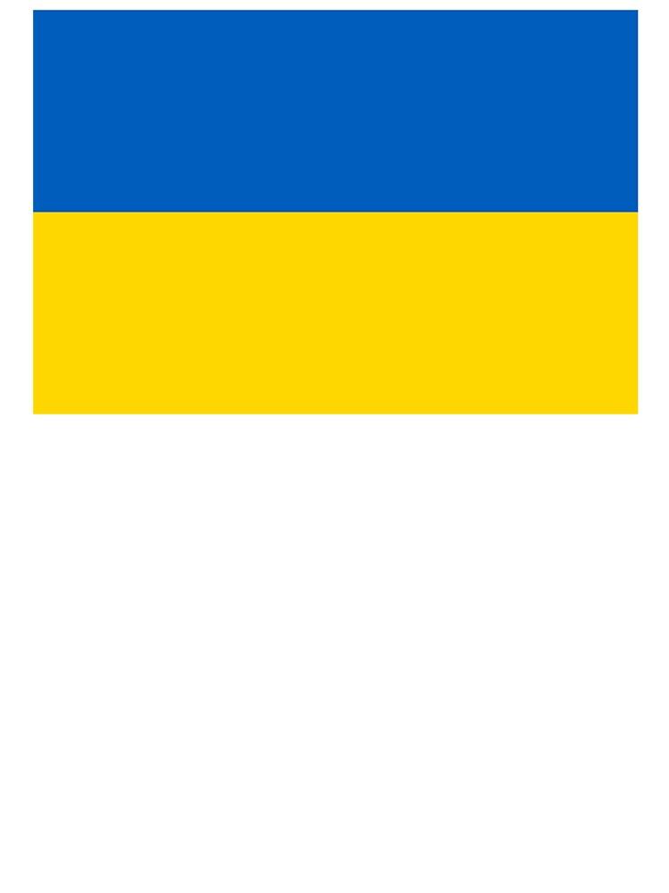 Camiseta Para Ninos Ucrania Bandera De Ucrania Bandera De Ucrania La Bandera Del Estado De Ucrania De Tomsredbubble Redbubble