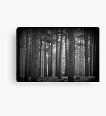 Troll Forest Canvas Print