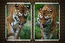 Two hot tigers by missmoneypenny