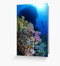 Underwaterworld - Habili Etnin Arug  Greeting Card