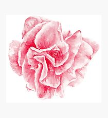 talisman . pink flower for love Photographic Print