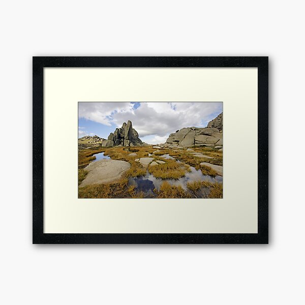 Granite Sentries Framed Art Print