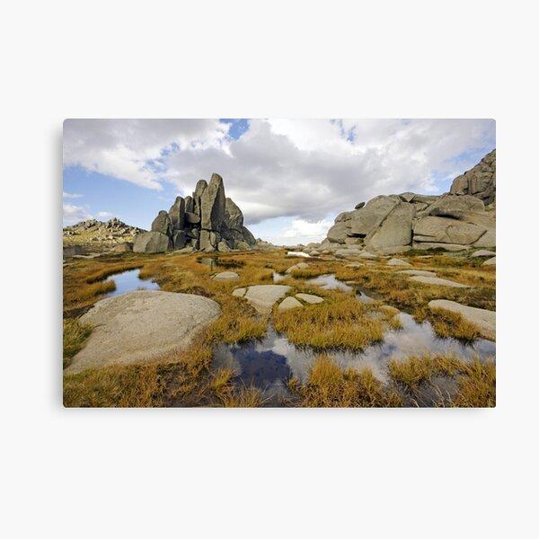 Granite Sentries Canvas Print