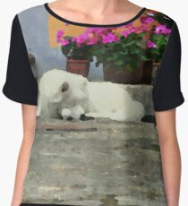 Watercolor with a dog Women's Chiffon Top