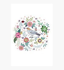 Beautiful bird in flowers Photographic Print