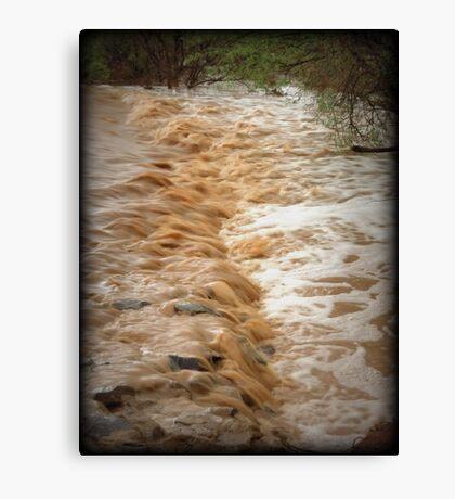 Muddy Waters Canvas Print